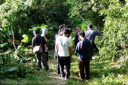 末吉公園を利用した身近な自然の観察学習